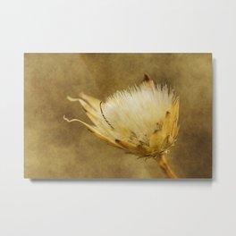 wild flower #111 Metal Print