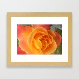Cold Day, Warm Colors Framed Art Print