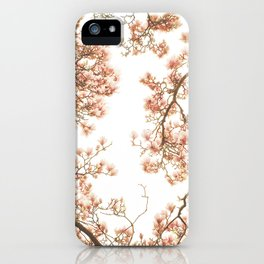Magnolia Tree Looking Up iPhone Case