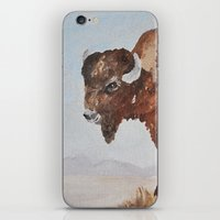 buffalo iPhone & iPod Skins featuring Buffalo by TheWildPlum