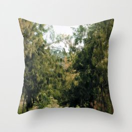 Walking Dada Throw Pillow