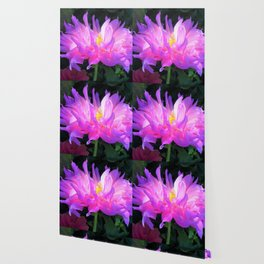 Stunning Pink and Purple Cactus Dahlia Wallpaper