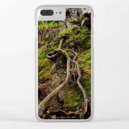 China Moss Clear iPhone Case