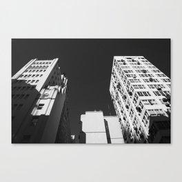 BN Canvas Print