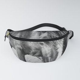 The black horse Fanny Pack