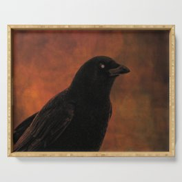 Crow Portrait In Black And Orange Serving Tray