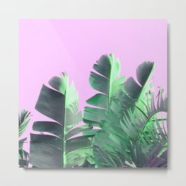Palm Tree Muck Metal Print