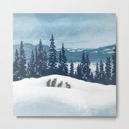 Frozen North Metal Print