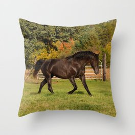 Rocky Mountain Horse Impulsive Ghost Throw Pillow