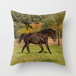Rocky Mountain Horse Impulsive Ghost Throw Pillow