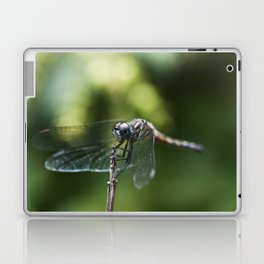 Fly, Dragon, Fly Laptop & iPad Skin