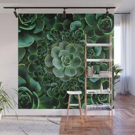 ORNATE JADE & DARK GREEN SUCCULENT  GARDEN Wall Mural