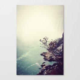 Niagara Canvas Print