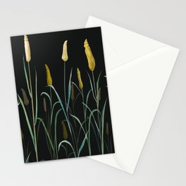 Prairie at Night Stationery Cards