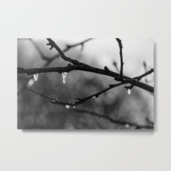 little icicles Metal Print
