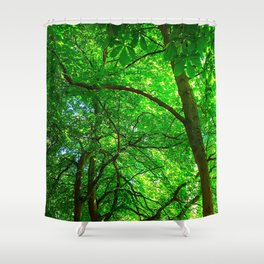 Maple Canopy, Dreamy and Magical Light Shower Curtain
