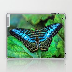 BUTTERFLY BLUE Laptop & iPad Skin