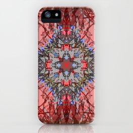 Ornate Red and Blue Mandala Magic Carpet iPhone Case