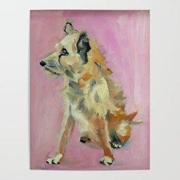 Marvelous Mystery Mutt Dog Portrait Poster