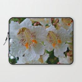 The Catalpa Blossom Laptop Sleeve