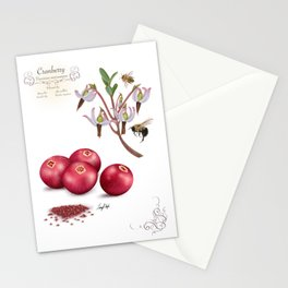 Cranberry and Pollinators Stationery Cards