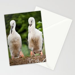 Orphaned two White Storks Stationery Cards