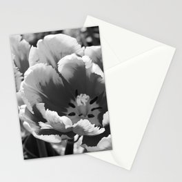 Black and White Parrot Tulip Stationery Cards