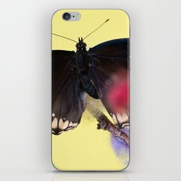 Tropical butterfly sitting on the colored bush over yellow background iPhone Skin