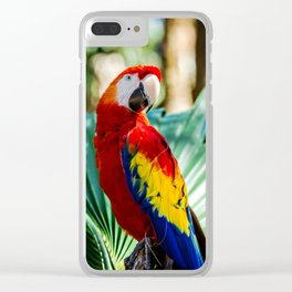 Macaw Clear iPhone Case