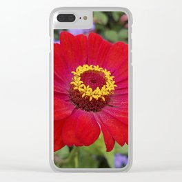 Red zinnia - blazing ring of fire Clear iPhone Case