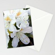 Beautiful white azalea flower photography. Stationery Cards