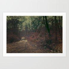 Path to Wonderland I Art Print
