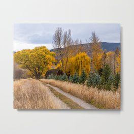 Colorado Little Red Barn Metal Print