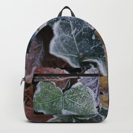 Frost Backpack