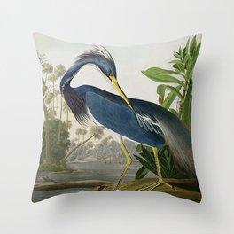 John James Audubon Louisiana Heron Painting Throw Pillow