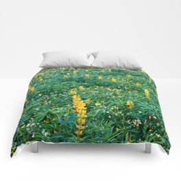 Field of lupins in bloom Comforters