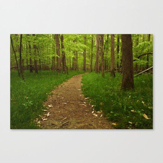 Walk in the Woods II Canvas Print