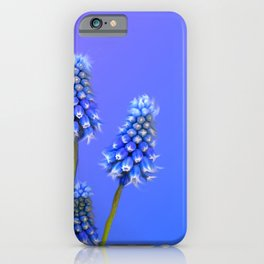 Grape Hyacinth Blue iPhone Case