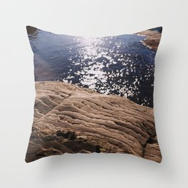 Bonanza Throw Pillow
