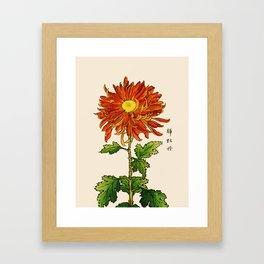 Vintage Japanese Chrysanthemum. Orange and Gold Framed Art Print