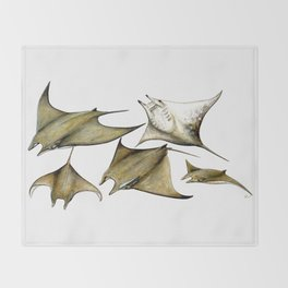 Chilean devil manta ray (Mobula tarapacana) Throw Blanket