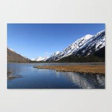 Tern Lake Canvas Print