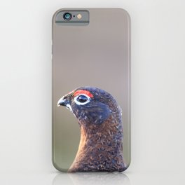 Red grouse iPhone Case