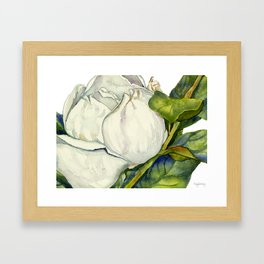 Magnolia with Leaves Framed Art Print