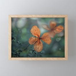 Flowers of Summer Gone  Framed Mini Art Print