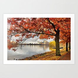 Fall in Boston, MA Art Print