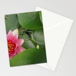 Lotus Flowe_pink1 Stationery Cards