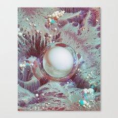 SALT EARTH (everyday 10.11.16) Canvas Print