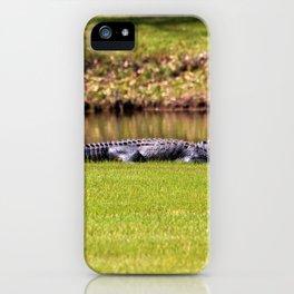 Alligator On Alert iPhone Case