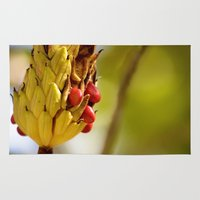 fruits Area & Throw Rugs featuring Fruits by MVision Photography